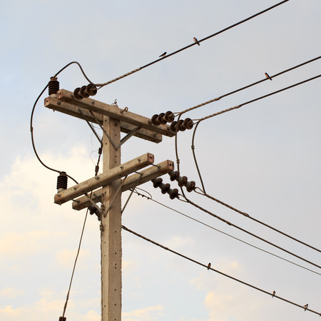 birds on a wire: electricity post, birds on wire and blue sky at sunset background