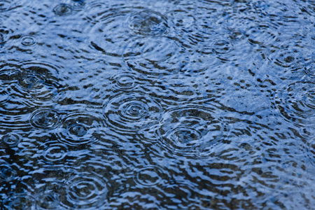 drizzling rain: Water surface with rain drops falling
