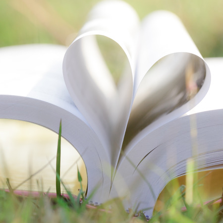 Close up heart shape from paper book on grass field