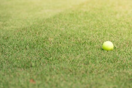 Golf ball on green grass 免版税图像 - 131584214