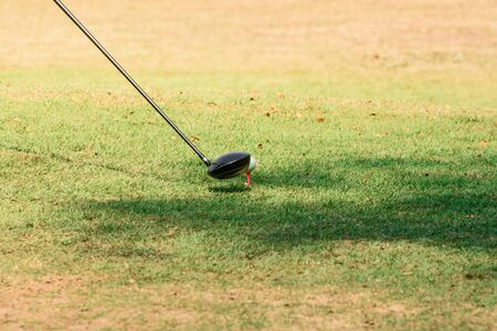 Golf club and ball on a green grass 免版税图像 - 131584445