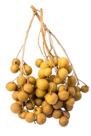 longan isolated white background fruit