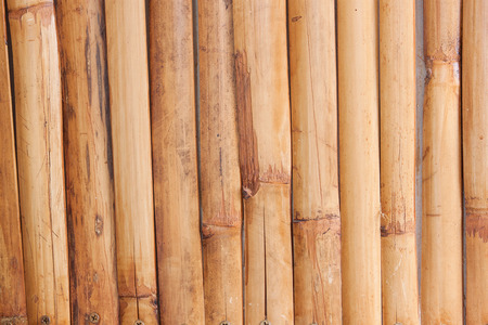 wall textures: bamboo fence background,Bamboo wall textures