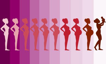 Veranderingen in het lichaam van een vrouw tijdens de zwangerschap, Silhouette zwangerschap podia, Vector illustraties Stock Illustratie