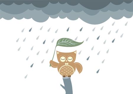 búhos de dibujos animados que se sienta en una rama en la lluvia, ilustraciones vectoriales
