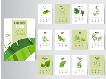 Calendar 2020 nature design, The year of the pig monthly cards templates