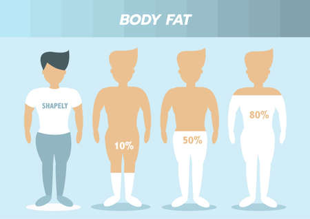 Body male types,front human body ,body fat,Vector illustrations