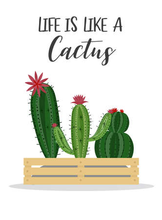 Happy Cactus with message,hand drawn isolated cactus,Cute green cactus in flower,illustrations.