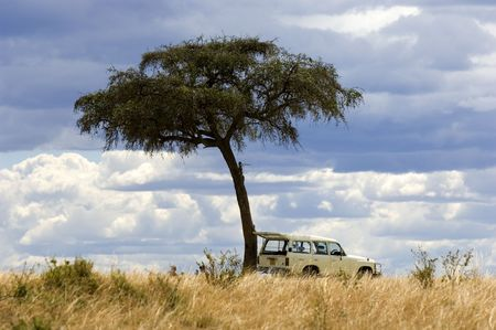 view of a 4X4 in the middle of a plain in the natural reserve of masai mara. photo