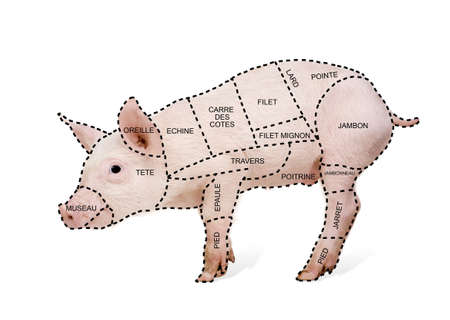 pig tails: Pork cut chart poster in french in front of a white background