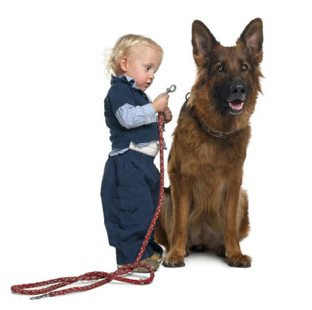 leashes: German shepherd dog with boy attaching leash