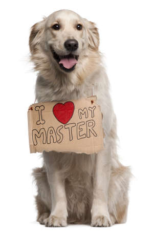 people holding sign: Golden Retriever, 2 years old, sitting in front of white background with sign