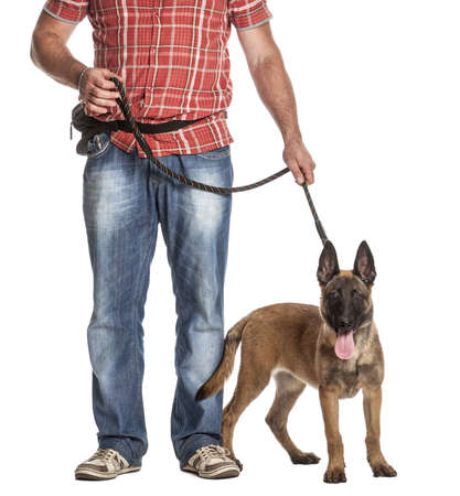man dog: Man holding a leashed and panting Belgian Shepherd against white background Stock Photo