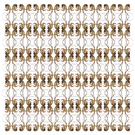 Spiny lobsters, Palinuridae, in repeated pattern, in front of white background Standard-Bild - 111467093