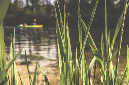 canoeing on a Loue river in eastern France, Europe Stockfoto