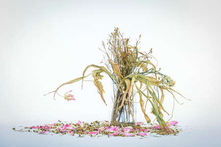 wilted flowers bouquet in a clear glass vase ,Vintage filtered Stockfoto