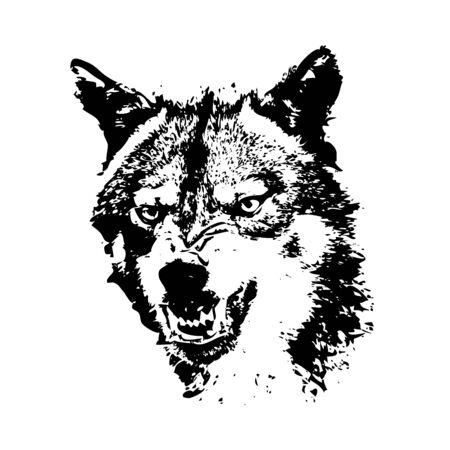 Wolf. The grinning face is black and white. Vector.