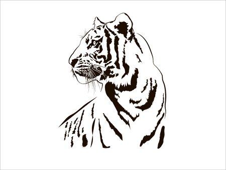 Tiger Big Cat Leopard Lion Pantera Yaguar Wild Black White Face Portrait Nature .Svg .Eps .Png Clipart Vector Tattoo Cricut Cut Cutting.