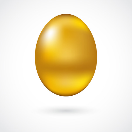 Beautiful golden egg for your design Vector