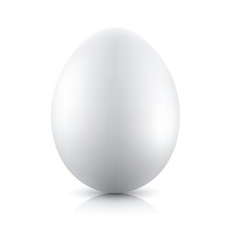 Vector silver egg isolated on white background
