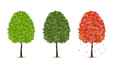 Vector maple trees set on white background