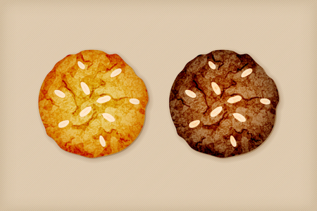 Vanilla cookie and chocolate cookie with almond vector illustration