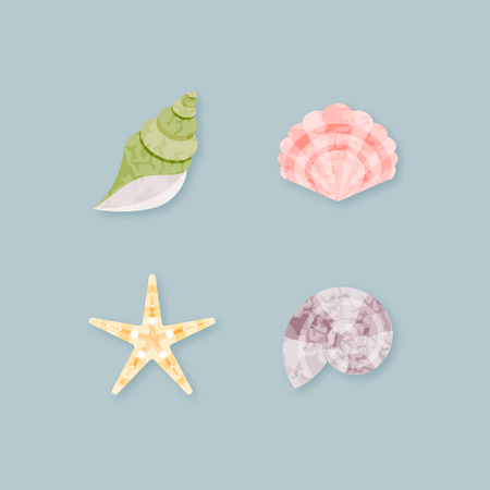 Colorful vector seashells set