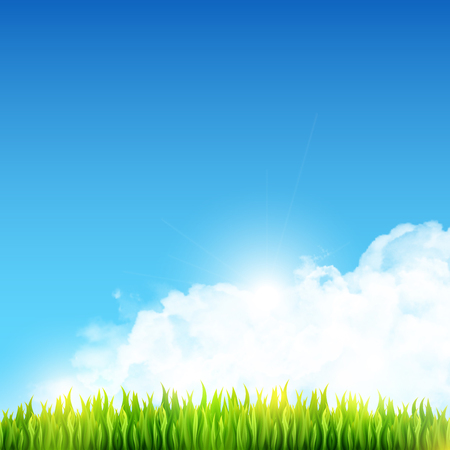 Shiny summer vector background with fresh green meadow grass and white transparent realistic fluffy cumulus clouds. Clear blue sky spring vector illustration with copyspace.