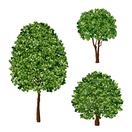 Realistic green trees foliage design element vector set Ilustrace