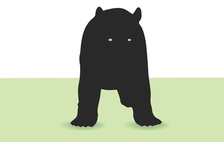 Bear standing in front of white background and on grass Stock Vector - 18586633