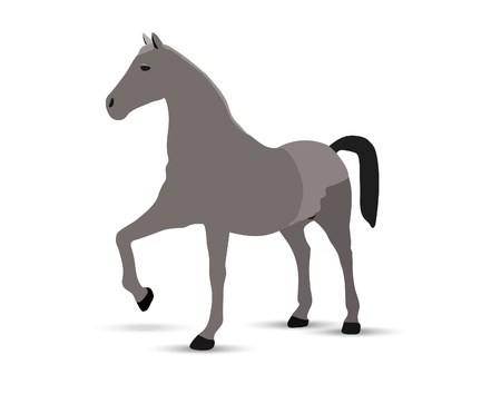 horse portrait  standing against white background Stock Vector - 18586856