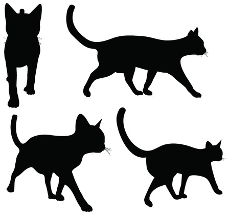 EPS 10 vector collection of cats silhouettes     Vector
