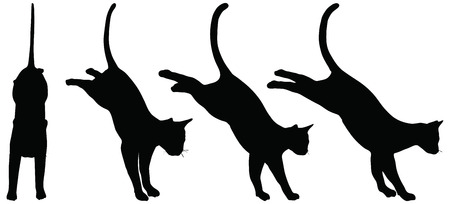 cat silhouette: EPS 10 vector collection of cats silhouettes