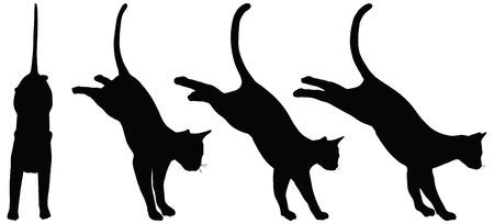 silueta de gato: EPS vector de colecci�n de 10 siluetas de gatos Vectores