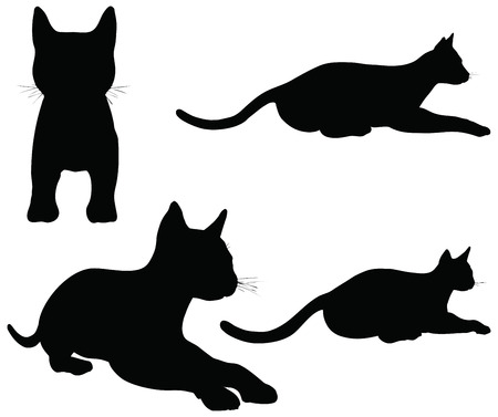 silhouette contour: EPS 10 vector collection of cats silhouettes
