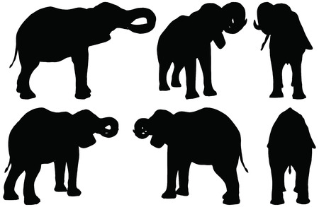 Eps 10 Set of editable vector silhouettes of African elephants in drink poses Vector