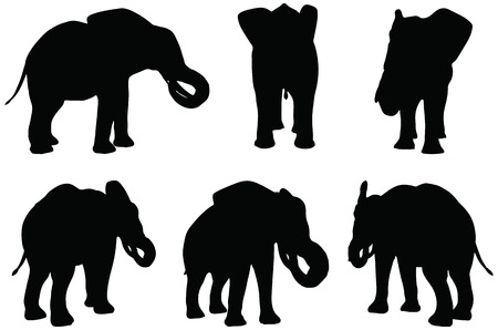 Eps 10 Set of editable vector silhouettes of African elephants in eat poses Vector