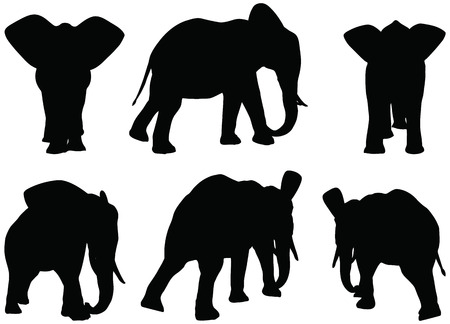 Eps 10 Set of editable vector silhouettes of African elephants in walk poses Vector