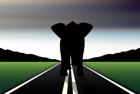Eps 10 Editable vector silhouette of African elephant in walk pose on a road Vector