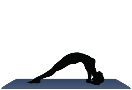 facing: EPS 10 vector illustration of Yoga positions in Upward Facing Pose