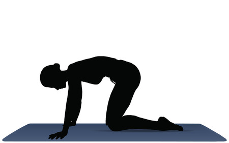 EPS 10 vector illustration of Yoga positions in Cat Pose Vector
