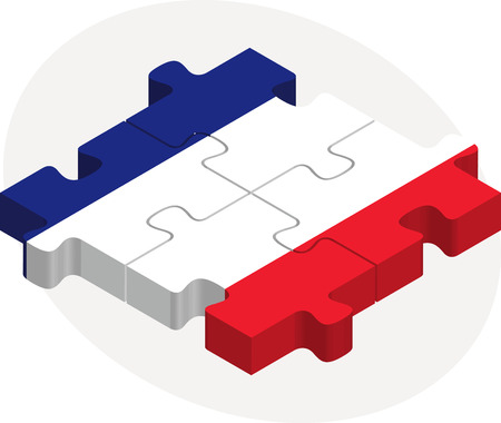 french flag: Vector illustration of French Flag in puzzle isolated on white background Illustration
