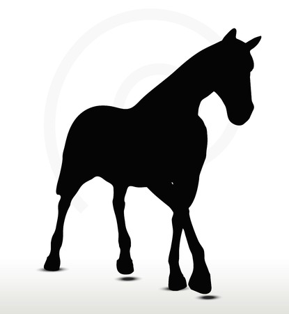 nag:  horse silhouette in Parade Walk position