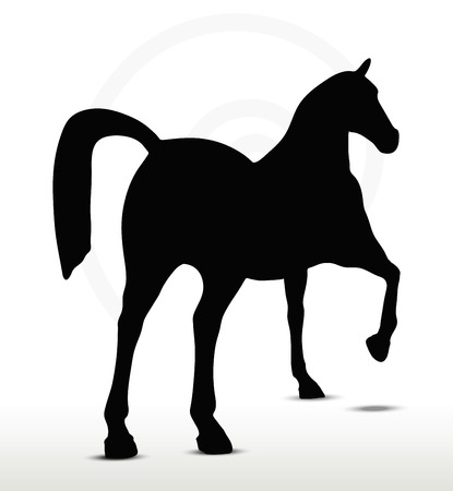 show horse:  horse silhouette in Show Horse position Illustration