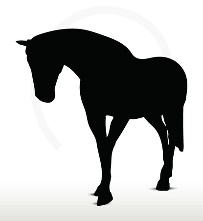 horse silhouette: EPS 10 Vector - horse silhouette in Walking Head Down position Illustration