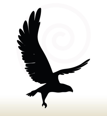 large bird: illustration of eagle silhouette isolated on white background Illustration