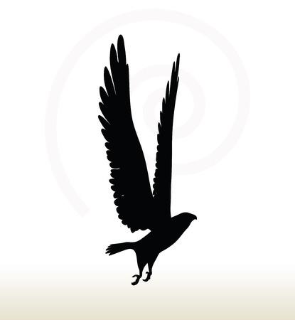 silhouette aquila: illustrazione di aquila silhouette isolato su sfondo bianco Vettoriali