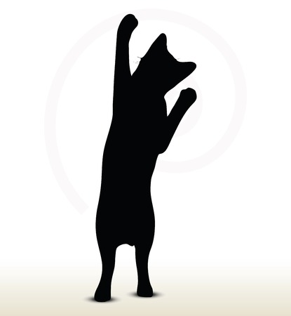 stand out: illustration of cat silhouette isolated on white background - in reaching pose