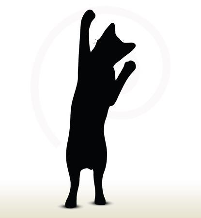 silueta de gato negro: ilustración de la silueta del gato aislado en fondo blanco - en pose llegar