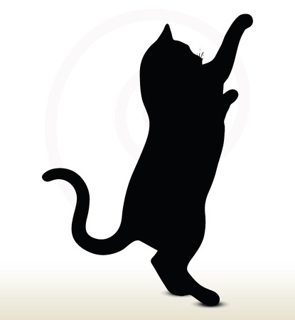 illustration of cat silhouette isolated on white background - in reaching pose Vector